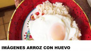fotos de arroz con huevo